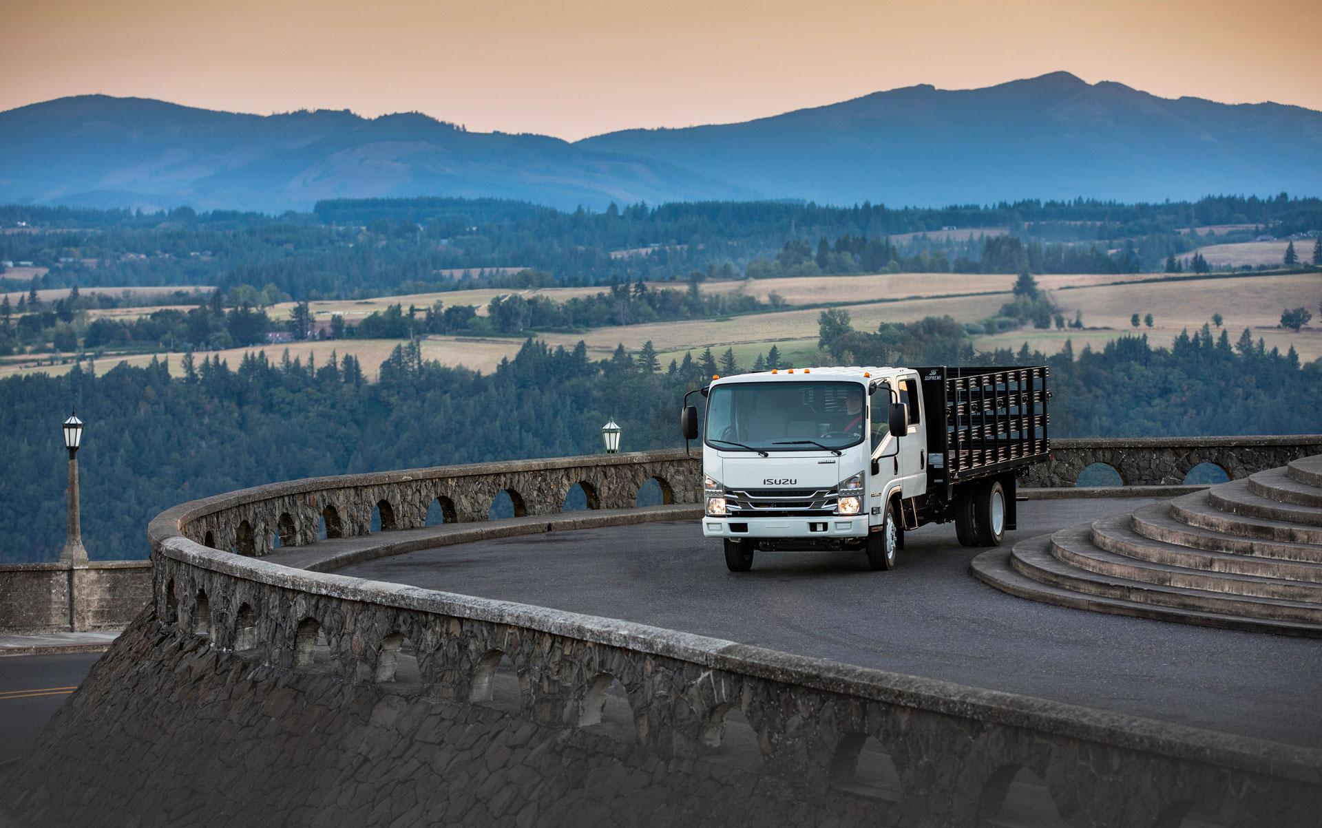 ISUZU N-Series Truck