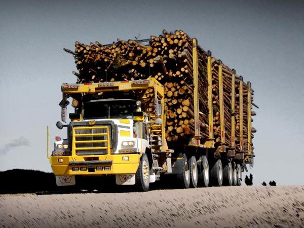 Heavy Haul Trucks - Velocity Truck Centers